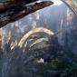 Pandoras bird view